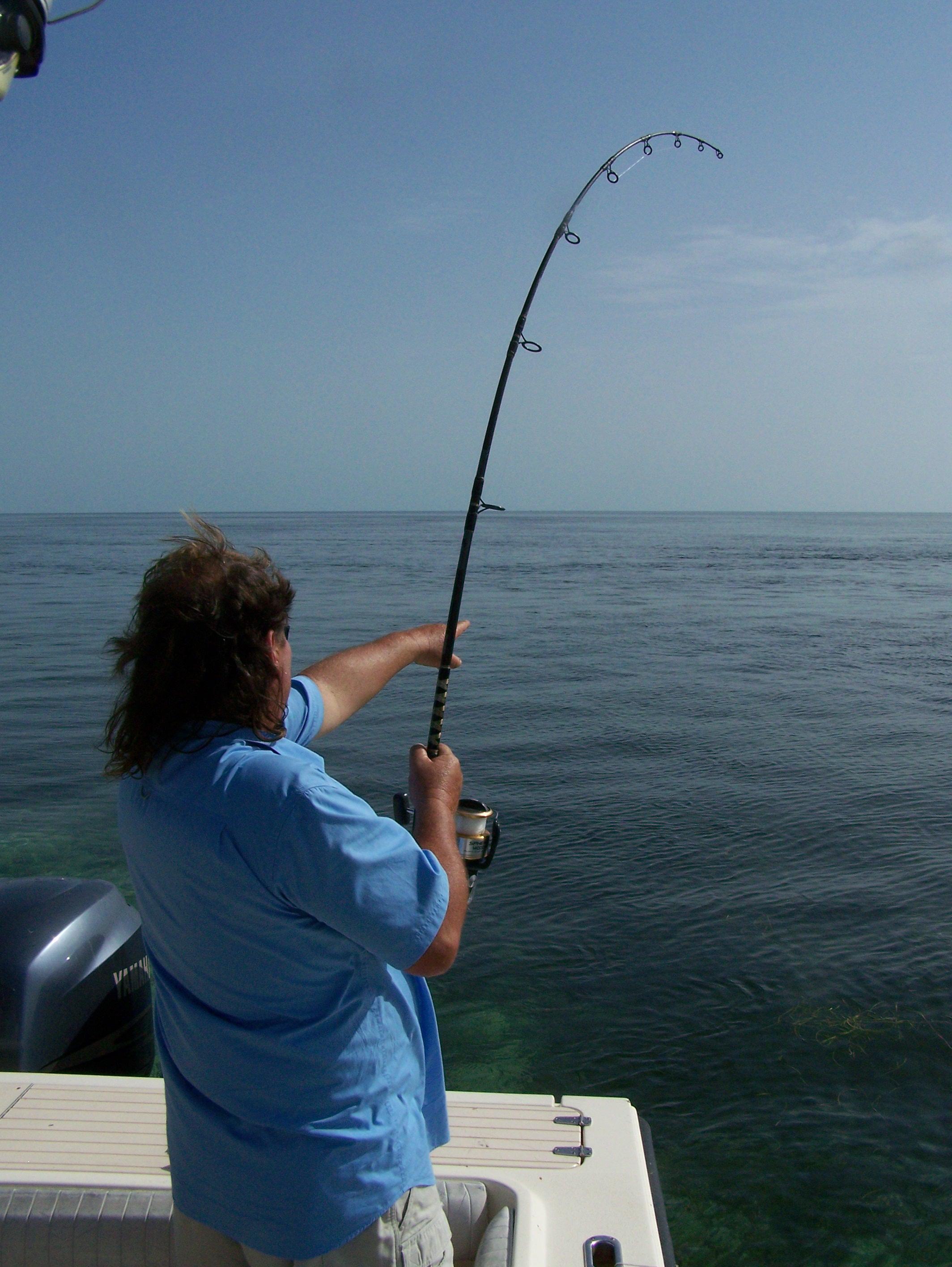 Florida keys shark fishing adventures with captain chris for Florida keys fishing trips